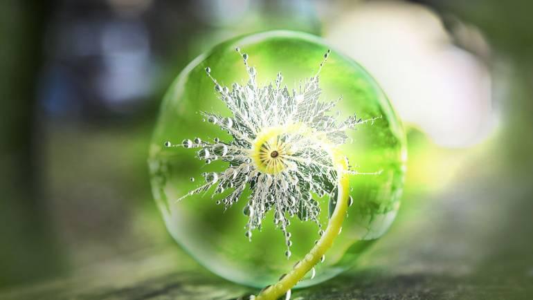 A kristálygömb